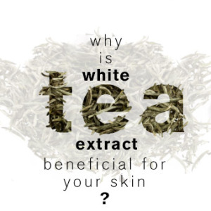 benefits of white tea for skin
