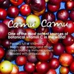 Camu Camu benefits