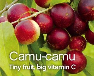 Camu Camu with Vitamin C