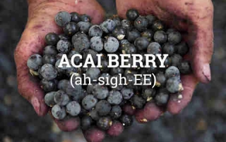 Acai benefits for skin and hair