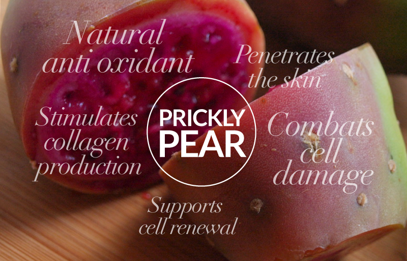 Prickly Pear benefits for skin