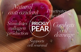 Prickly Pear benefits for skin care