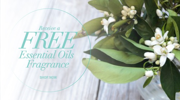 essential oils fragrance